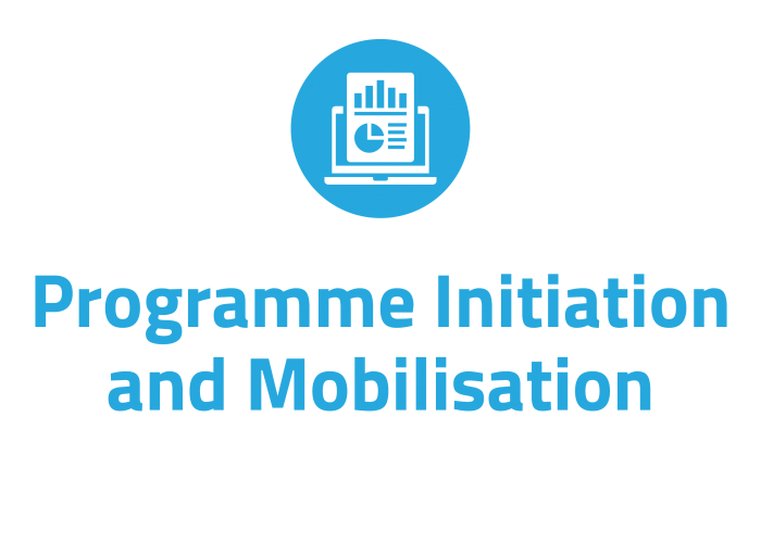 Programme initiation and mobilisation consultancy for the insurance industry in Ireland